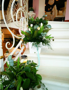 tulipani scala